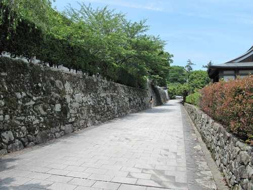 坂本の保全地区